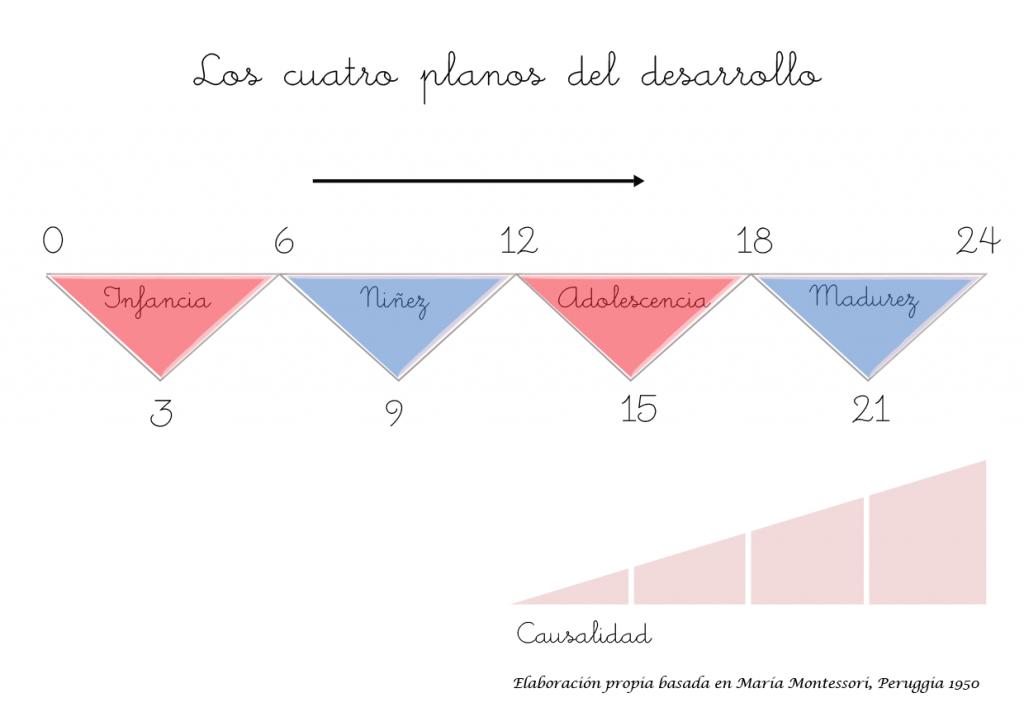 4 Planos de desarrollo Montessori